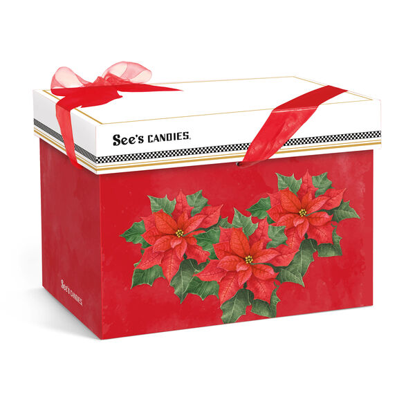 Poinsettia Gift Pack view 2