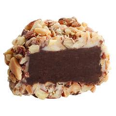 Almond Truffle View 1