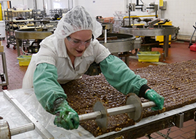 See's Candies Candy Maker Employee